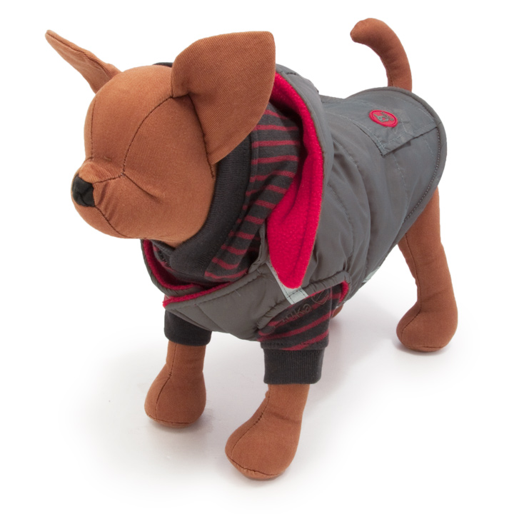 犬服のダッシュ フーディー ジャンパー  [グレー]